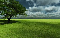 De hemel van de aardboom royalty-vrije stock fotografie