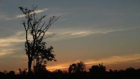 De hemel van de avond stock videobeelden