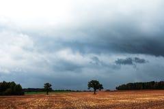 De hemel van de herfst. Royalty-vrije Stock Foto's
