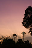De hemel van de zonsopgang, de aardlicht van Nice Stock Afbeeldingen