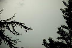 De hemel van het onweer Stock Foto