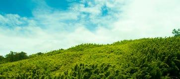 De Hemel van het paradijs Stock Foto's