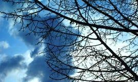 De hemel van de vroege lente verandert elke minuut Royalty-vrije Stock Afbeelding