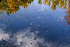 De hemel wordt weerspiegeld in het water op een herfst zonnige dag Royalty-vrije Stock Foto