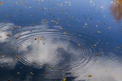 De hemel wordt weerspiegeld in het water op een herfst zonnige dag Als achtergrond of textuur Royalty-vrije Stock Afbeelding