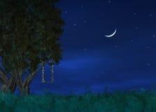 De Hemelen van de nacht Royalty-vrije Stock Foto's