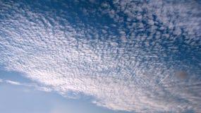 De hemelwolken van de makreel Stock Afbeelding