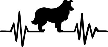 De Herdershondhartslag van Shetland stock illustratie