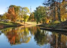 De herfst. Stock Afbeeldingen