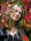 In de herfst Royalty-vrije Stock Afbeeldingen