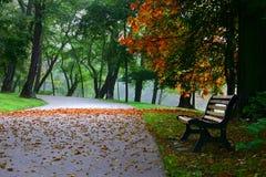 De herfst #2 Stock Foto's