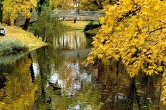 De herfst. Royalty-vrije Stock Afbeelding