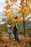 De herfst royalty-vrije stock afbeeldingen