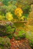 De herfst Stock Foto's