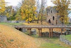 De herfst. Stock Afbeelding