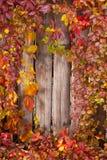 De herfst abstract kader Omheining en bladeren Royalty-vrije Stock Foto's