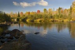 De herfst in Algonquin Park Stock Foto's