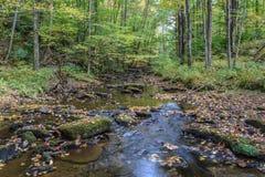 De herfst in Alleghenies Royalty-vrije Stock Fotografie