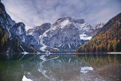 De herfst in Alpen. Stock Foto's