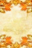De herfst bacground Royalty-vrije Stock Afbeeldingen