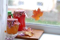 De herfst behoudt Royalty-vrije Stock Foto's