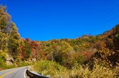 De herfst in bergen Stock Afbeelding