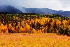 De herfst in bergen Stock Afbeeldingen
