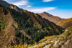 De herfst in de bergen Alma Ata kazachstan stock foto