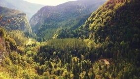 De herfst in de bergenkloof stock foto's