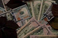 De herfst beweging veroorzakend van dollars Royalty-vrije Stock Afbeeldingen