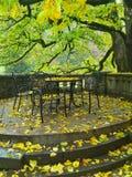 De herfst bij castel Royalty-vrije Stock Fotografie