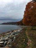 De herfst bij Diepe Kreek, M.D. Royalty-vrije Stock Foto