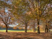 De herfst bij het 5de gat Royalty-vrije Stock Fotografie