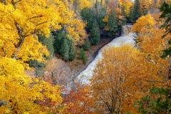 De herfst bij het Lachen Witte visdalingen van Noordelijk Michigan, de V.S. royalty-vrije stock afbeelding