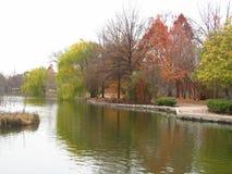De herfst bij het meer Stock Foto