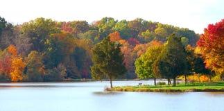 De herfst bij het Park royalty-vrije stock foto's