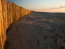 De herfst bij het strand Stock Fotografie