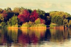 De herfst bij meer stock afbeeldingen