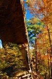 De herfst bij Natuurlijke Bruggen, Kentucky stock foto's
