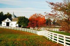 De herfst in blauw grasland royalty-vrije stock foto's