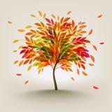 de herfst boom Stock Afbeelding