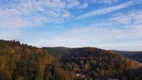 De herfst in bos stock afbeeldingen
