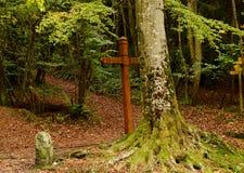 De herfst bos en mystiek kruis bij de weide royalty-vrije stock afbeelding