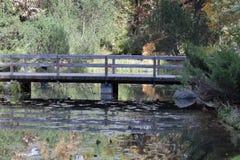 De herfst in de botanische tuin Royalty-vrije Stock Fotografie