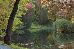 De herfst in de botanische tuin Stock Afbeelding
