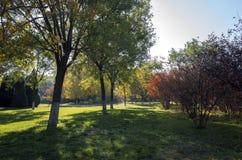 De herfst in de Botanische Tuin van Zibo stock foto