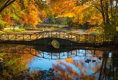 De herfst, brug en rivier Stock Fotografie