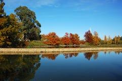 De herfst in Canberra Stock Foto