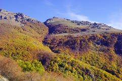 De herfst in Centraal Balkan Nationaal Park, Bulgarije royalty-vrije stock foto
