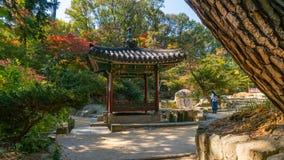 De herfst changdeokgung paleis stock afbeeldingen